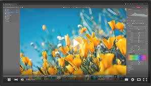 Zoner Photo Studio X Crack 2021 Free Download